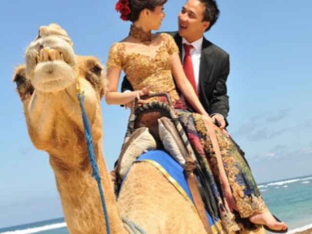 Bali Pre Wedding Camel Riding