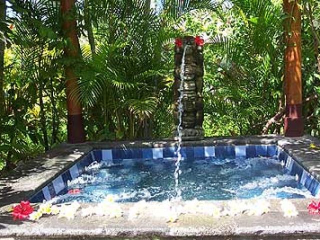 Villa Hanani Pool Bali