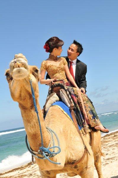 Bali Pre Wedding Camel Riding