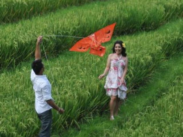 Bali Pre Wedding at Rice Paddies
